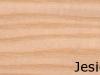 jesion